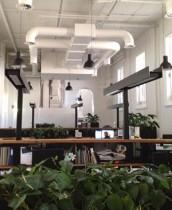 office web 6